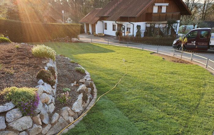 GartenbauSchiegl-Rasen